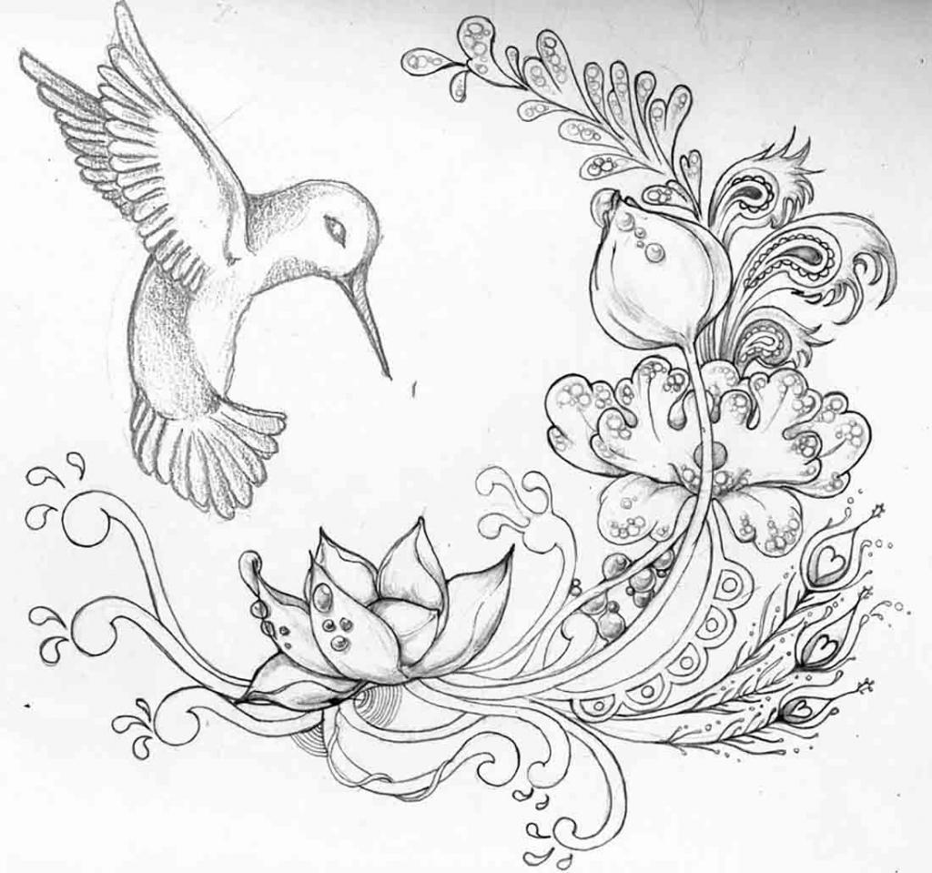 1024x959 Beautiful Drawings Of Butterflies On Flowers