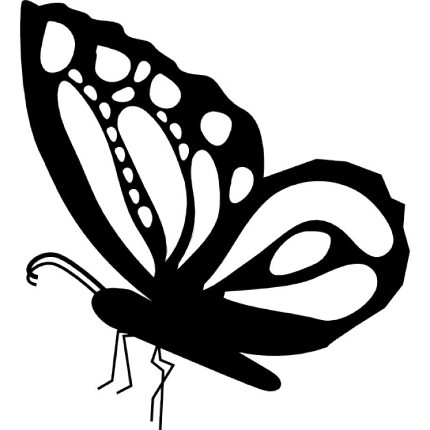 626x626 Butterfly Beautiful Side View Shape With Ornamental Design