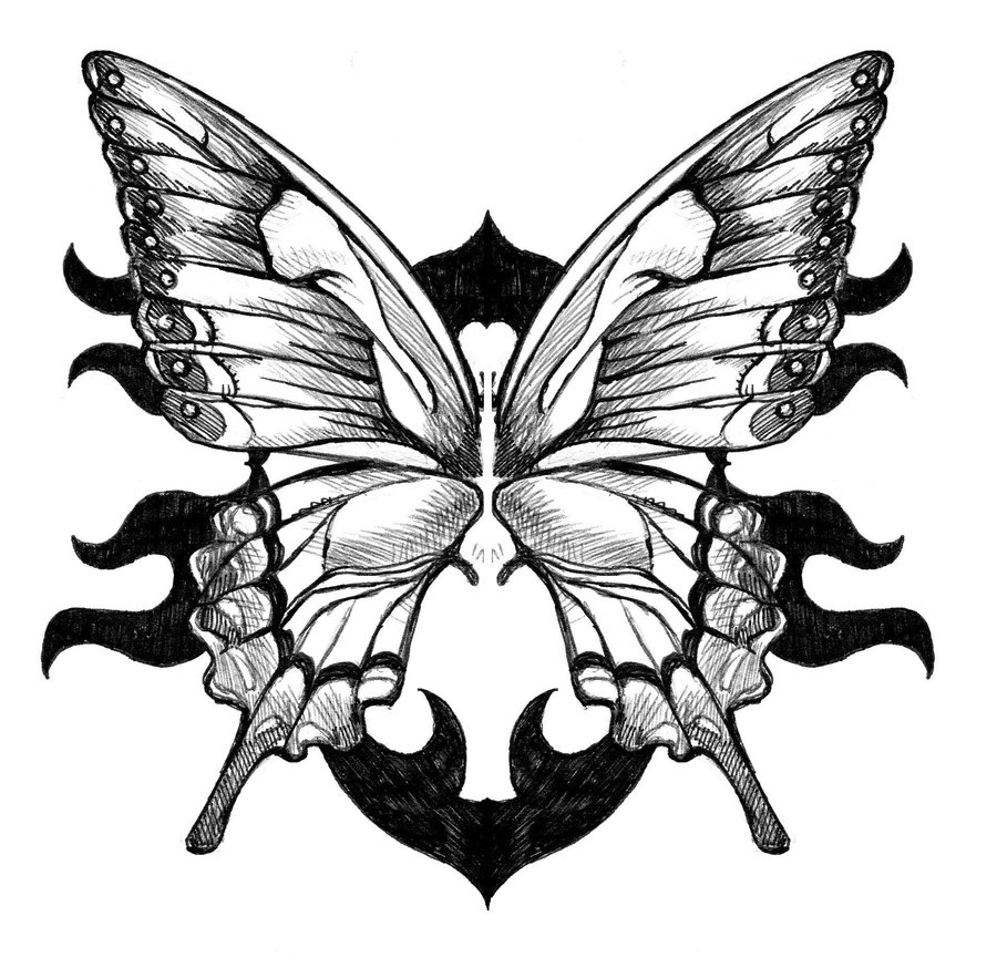 900x874 Large Hand Drawn Butterfly Butterfly Wings Tattoo By Gitoku