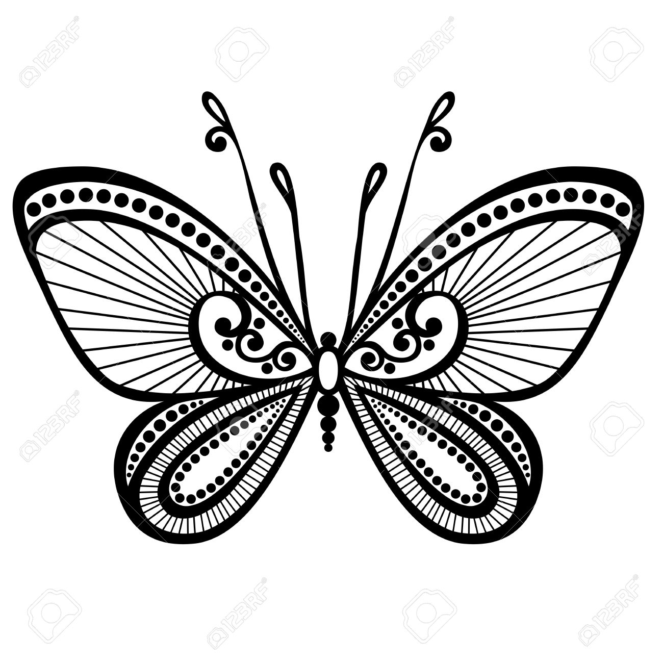 1300x1300 Vector Beautiful Butterfly, Exotic Insect Patterned Design