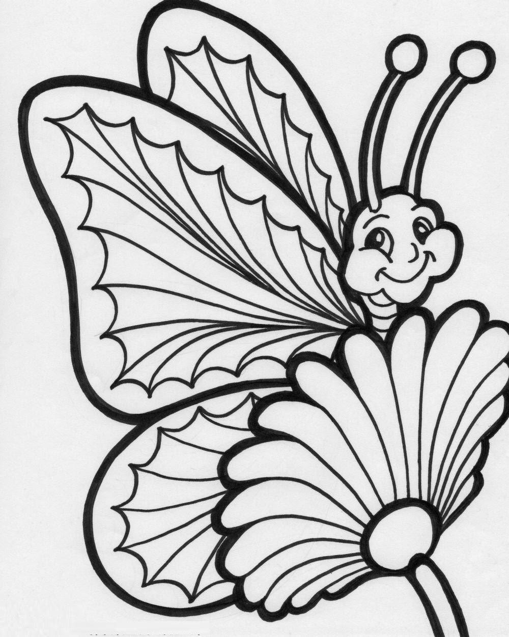 1000x1252 Colours Drawing Wallpaper Beautiful Colour Butterflies Drawing Hd