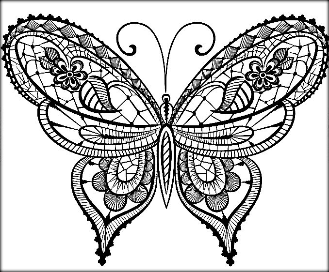 Beautiful Butterfly Drawing at GetDrawings.com | Free for personal ...