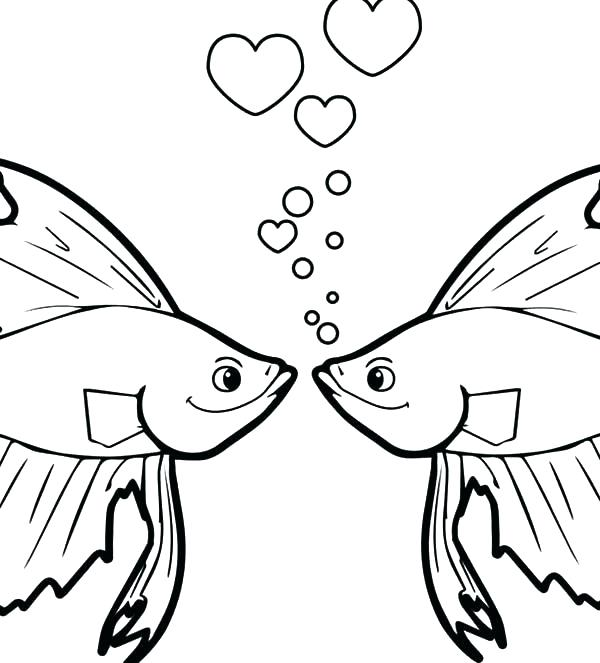 600x663 Complete Starfish Coloring Pages Print Fish Color And Goldfish