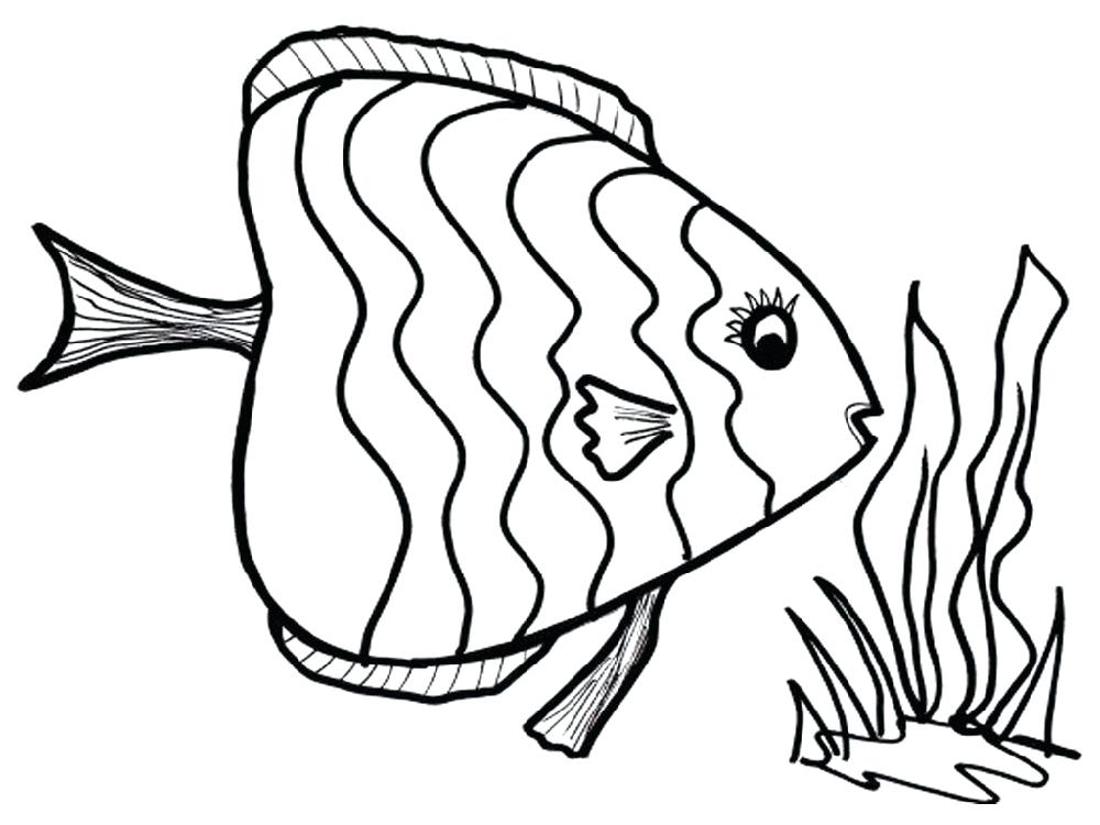 1000x750 Fish Color Pages Color Pages Of Fish Beautiful Fish Coloring Pages
