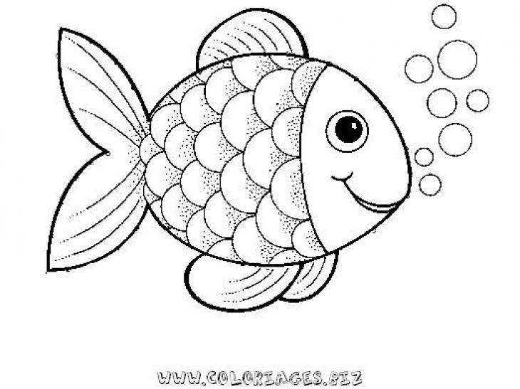 how to draw a pretty fish