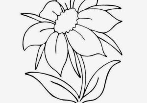 300x210 Easy Pretty Drawings Of Flowers