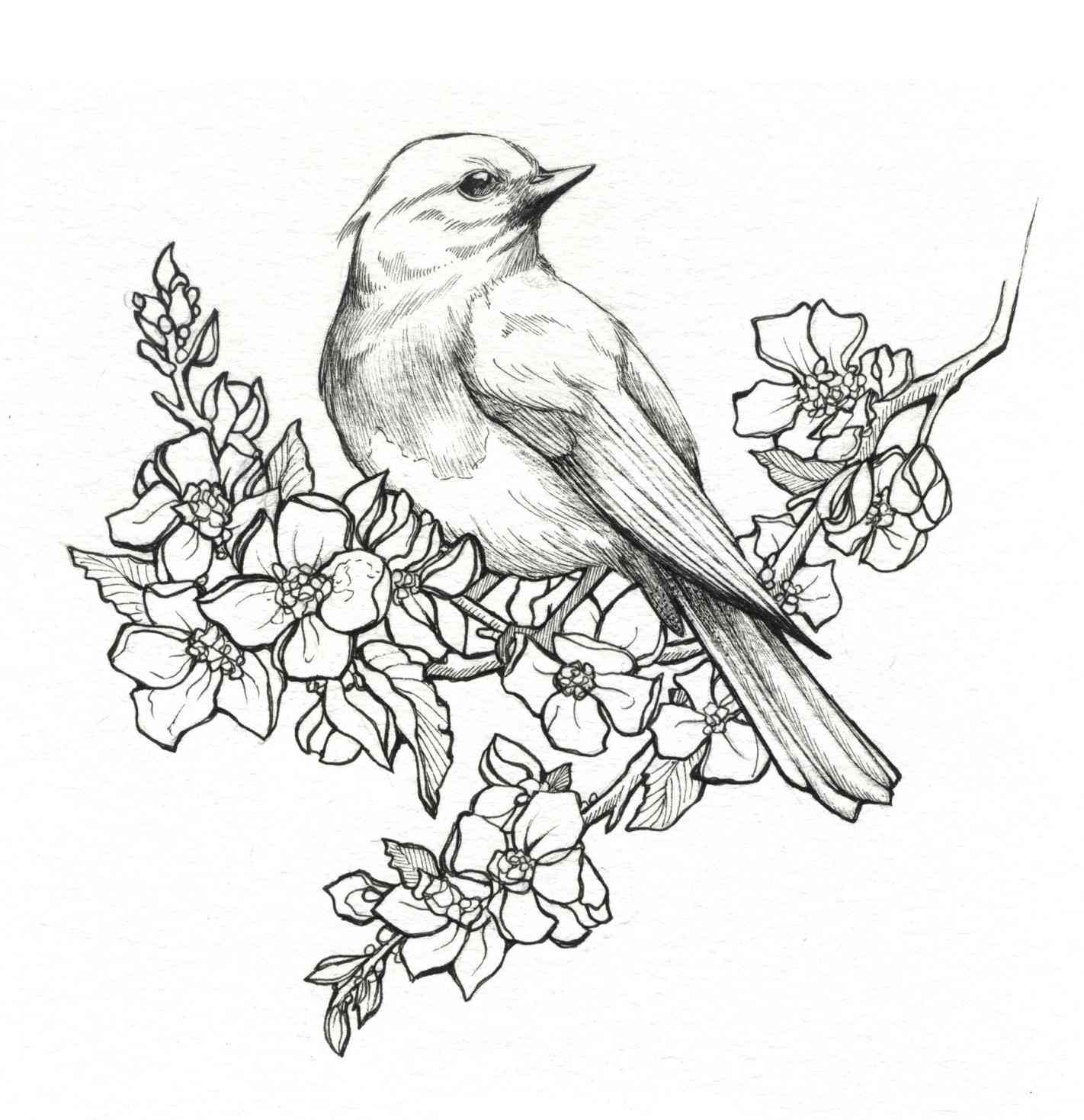 1422x1469 Beautiful Drawing Pictures Of Flowers