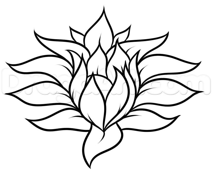 871x703 Drawing A Pretty Flower Easy Step 5 Dragoart