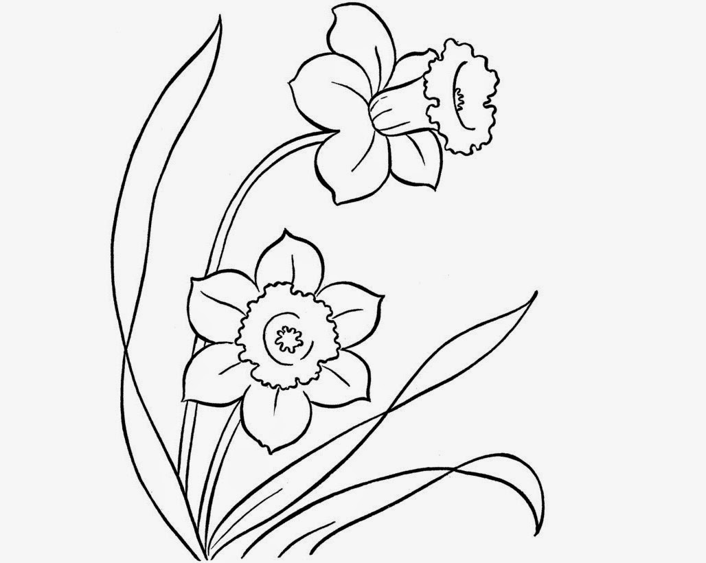 1028x820 Colour Drawing Free Hd Wallpapers Beautiful Flowers For Kid