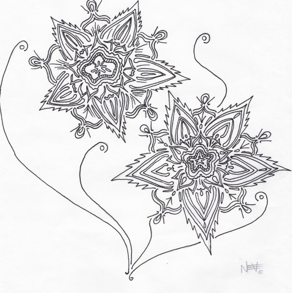 1022x1024 Drawings Of Different Flowers Pictures Of Flowers To Draw
