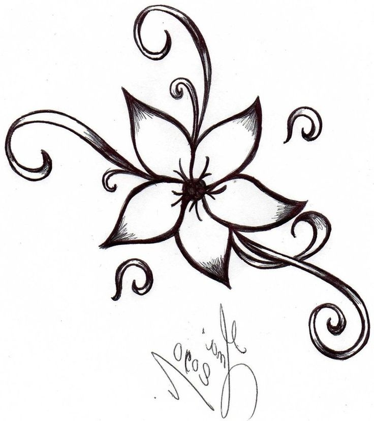 736x830 Flower Drawings