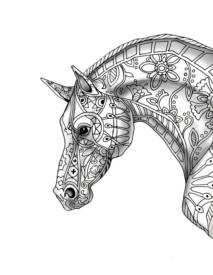 Beautiful Horse Drawing