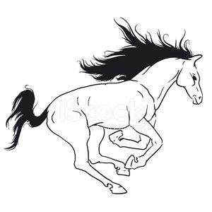 300x300 Beautiful Horse Stock Vectors