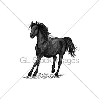 325x325 Stylized Black Beautiful Horse Gl Stock Images