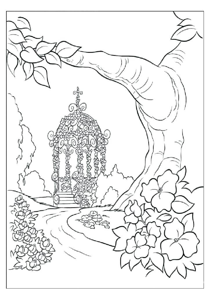 724x1024 Nature Coloring Beautiful Nature Coloring Nature Coloring Pages