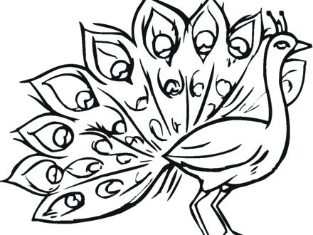 440x330 Coloring Pages Peacock Beautiful Peacock Coloring Page