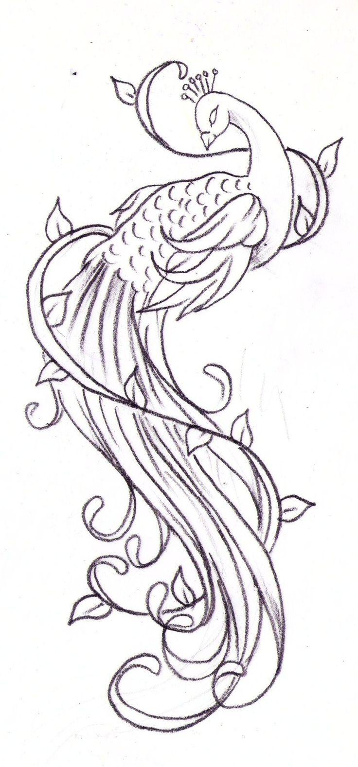 736x1578 Beautiful Drawings Peacock Image Beautiful Sketches Of Peacock