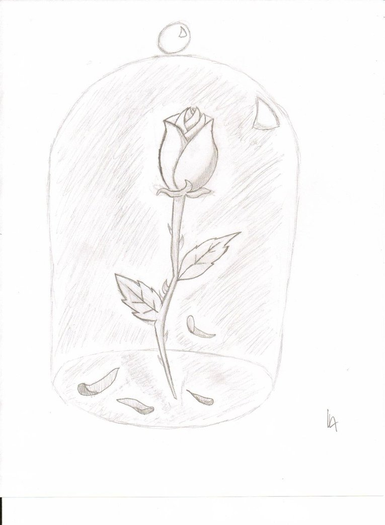 765x1044 Beauty And The Beast Rose By Asbe5