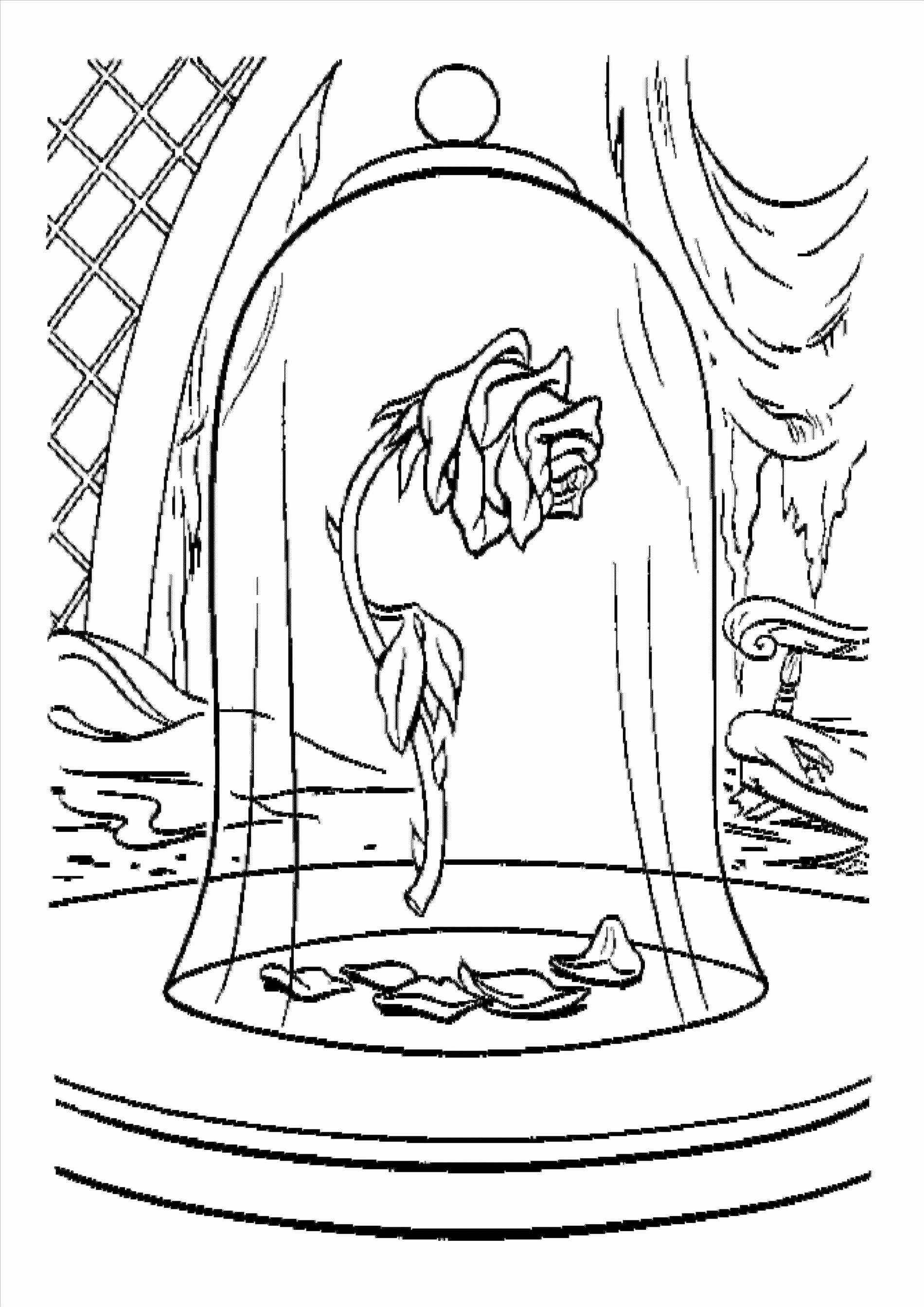 1900x2687 Step Ua From The Beauty And The Beast Rose Drawing Side View Step