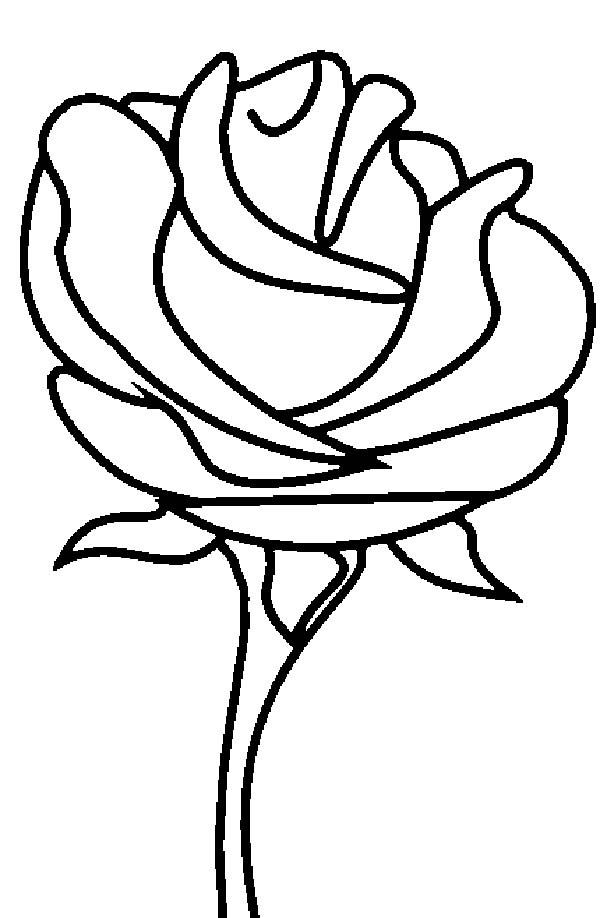 600x918 Beauty And The Beast Rose Coloring Page
