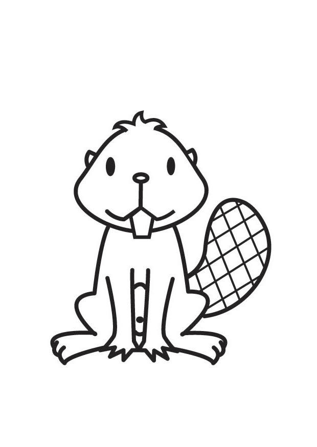 620x875 Coloring Page Beaver
