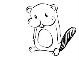 259x195 Simple Beaver Drawing