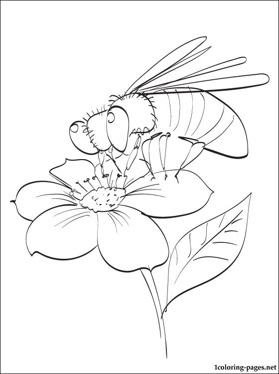 560x750 Bee Pollinating A Spring Flower Coloring Page Pages