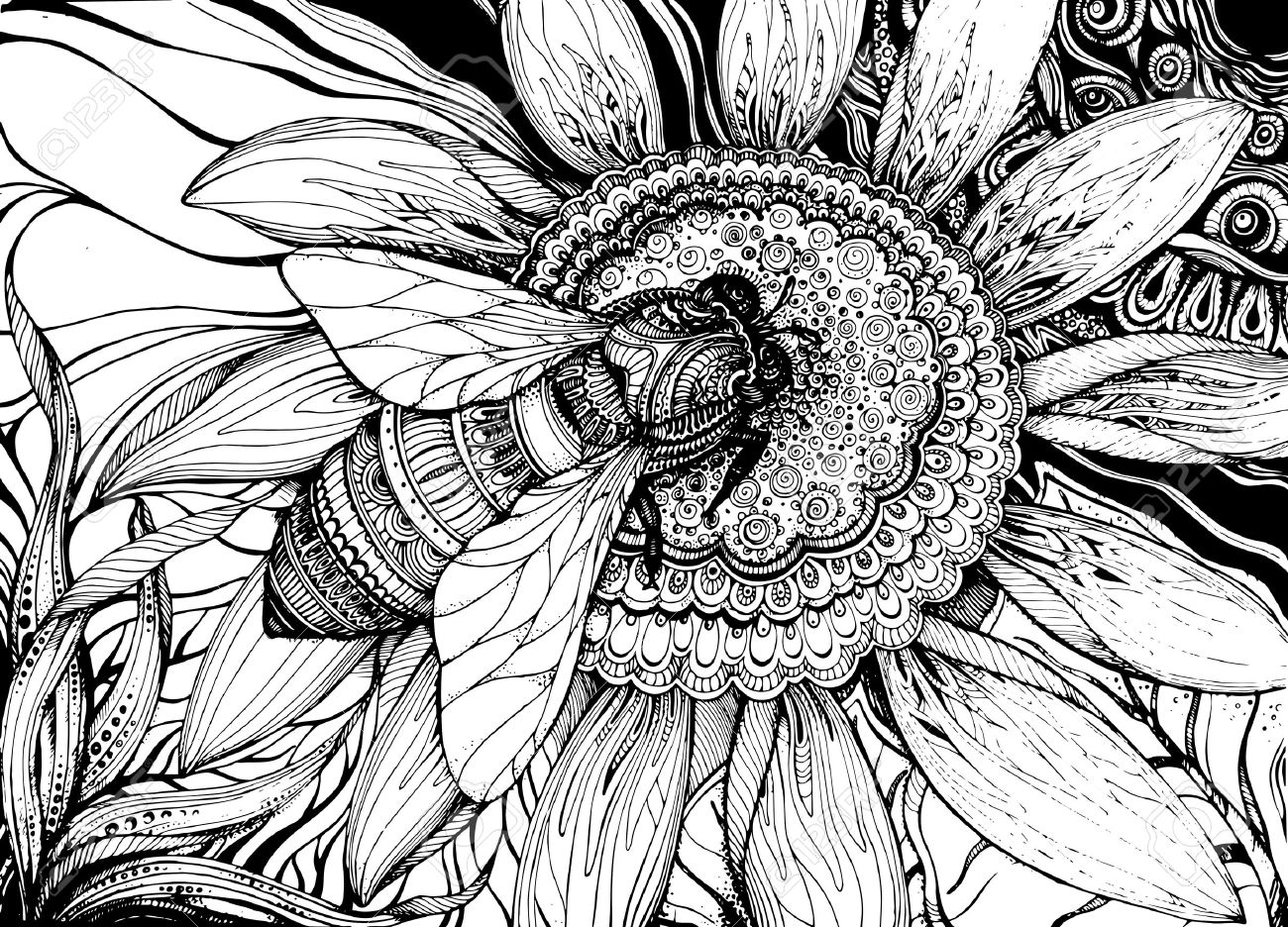 Black Line Flower Drawing : Flower drawing tumblr