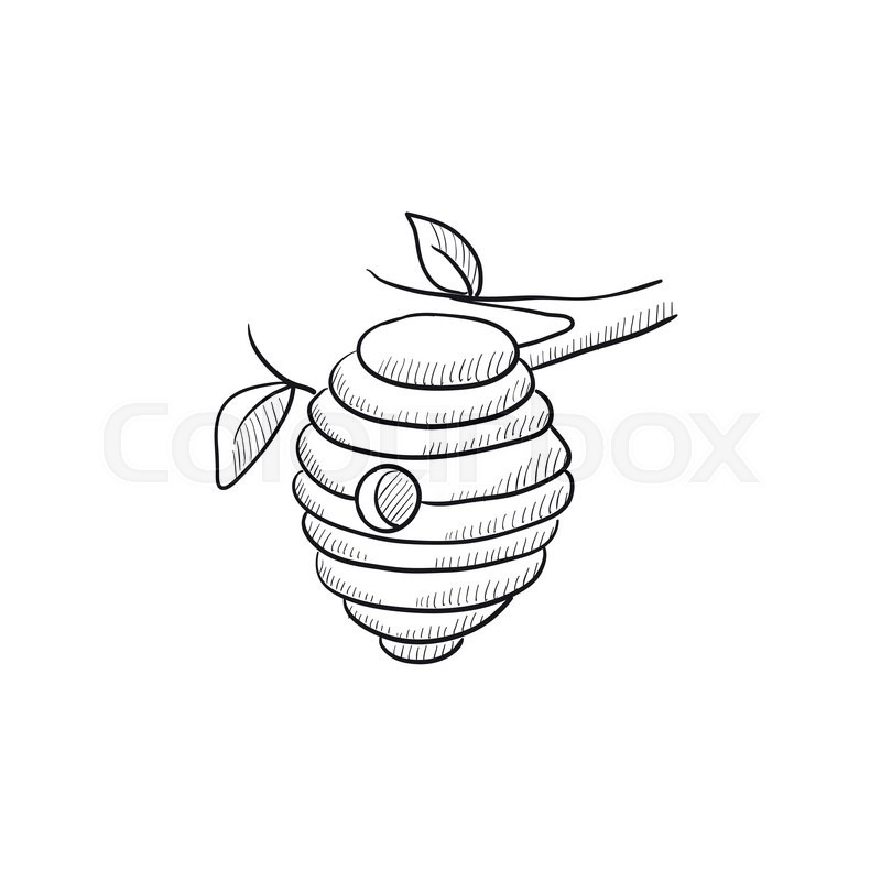 800x800 Bee Hive Sketch Icon For Web, Mobile And Infographics. Hand Drawn