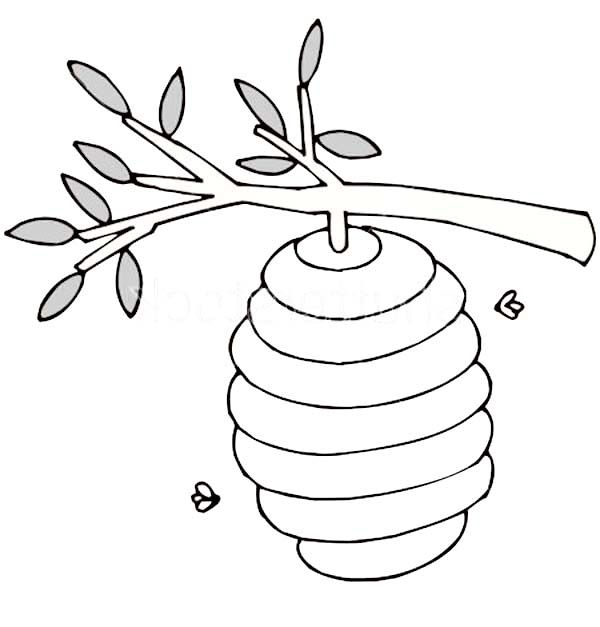 600x627 Beehive Coloring Page