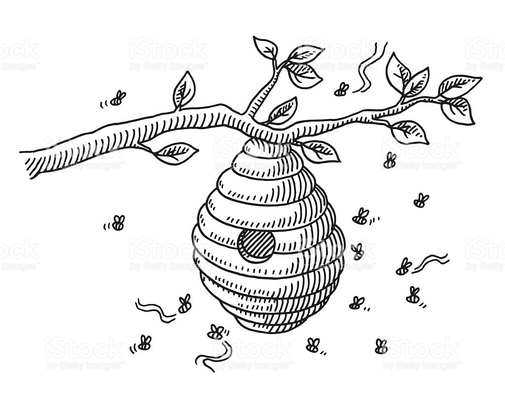1024x820 Drawn Bees Beehive