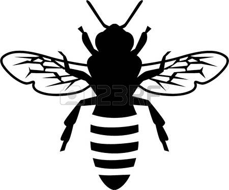 450x374 Image Result For Honey Bee Line Drawing Lino