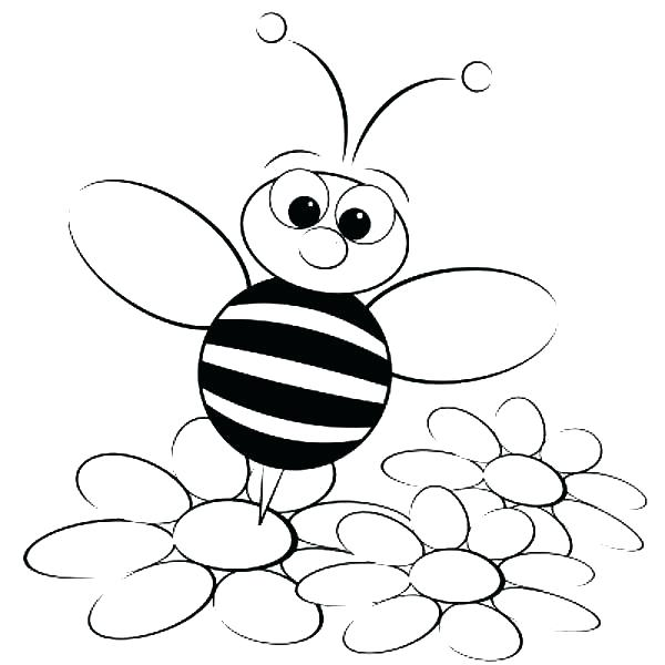 600x600 Bee Coloring Pictures Bee Coloring Page Picture Bumble Bee