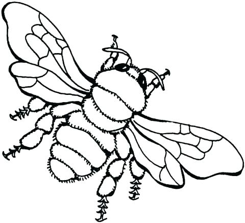 480x437 Coloring Page Bee Cartoon Bee Flower A Page To Print Out