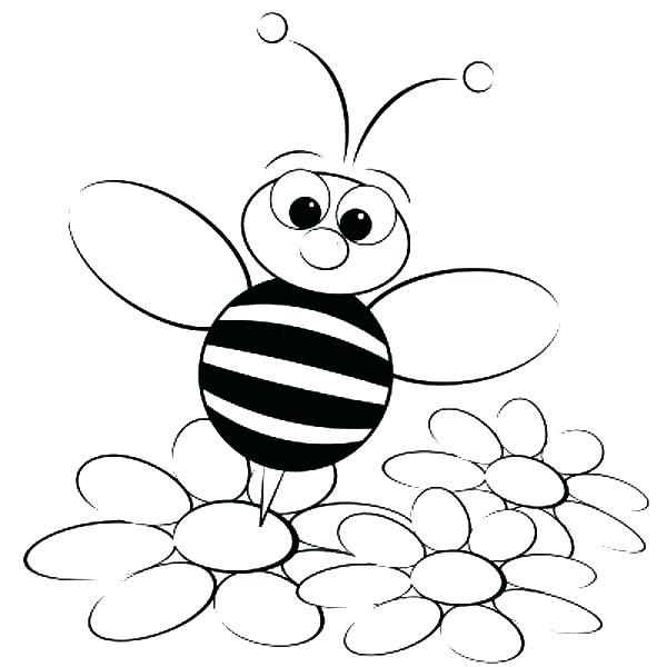 Bee On Flower Drawing At Getdrawings Com