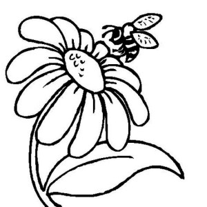 300x300 Mr Bee And A Daisy Flower Coloring Page Mr Bee And A Daisy Flower