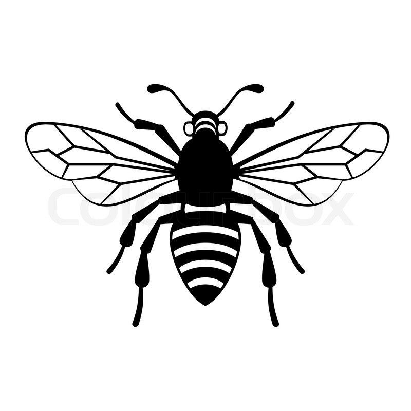 800x800 Bee Icon On White Background Vector Illustration Stock Vector
