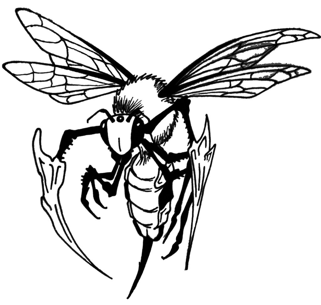 1024x970 Collection Of Line Art Bee Tattoo Design