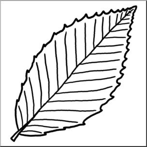 304x304 Clip Art Leaf Beech Bampw I Abcteach