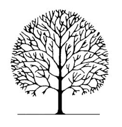 253x263 Pruning Deciduous Broadleaf Trees