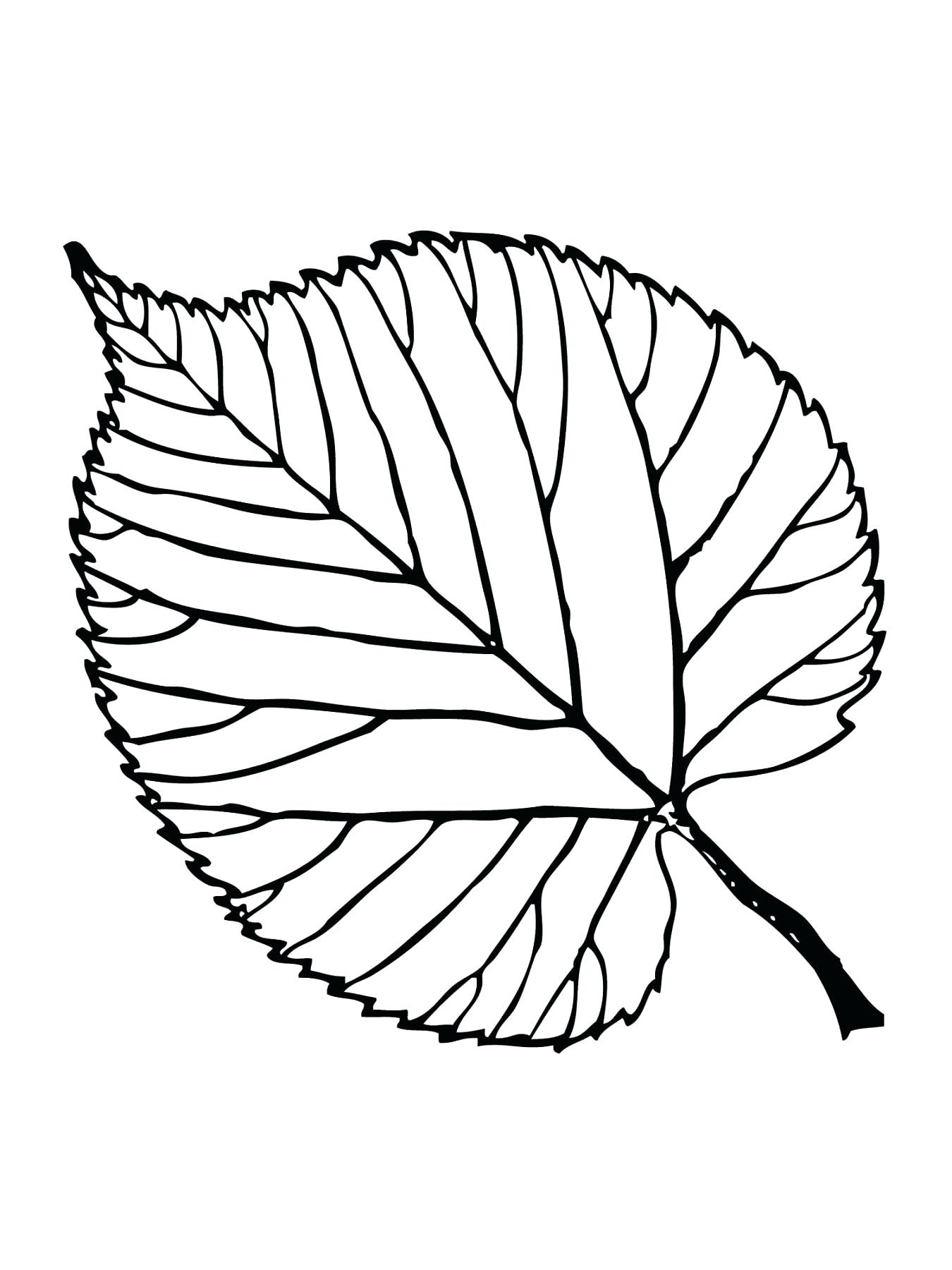 1350x1800 Coloring Coloring Page Leaf