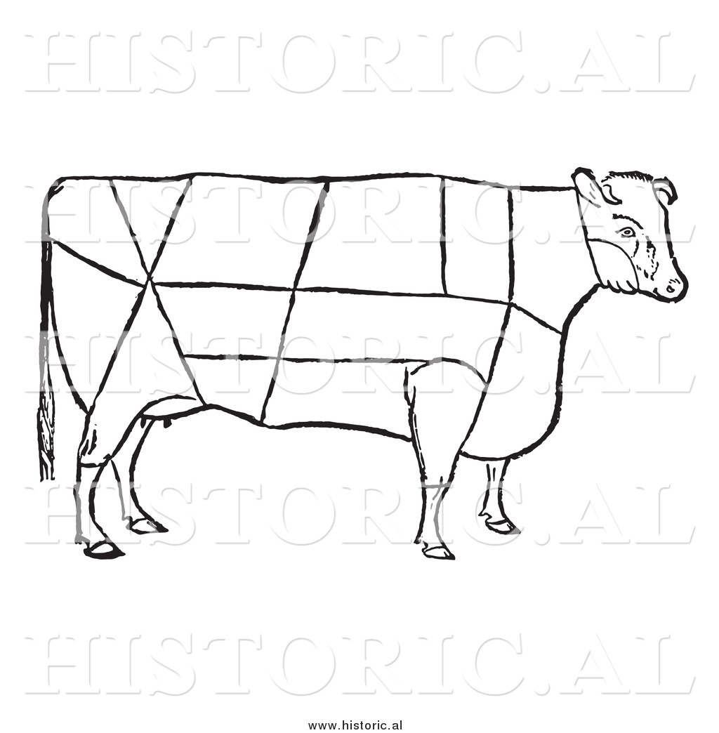 1024x1044 Clipart Of A Cow With Beef Cuts Outlined