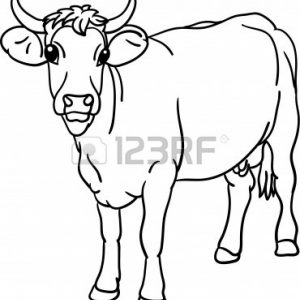 300x300 Showing Post Media For Cartoon Cow Face Coloring Page