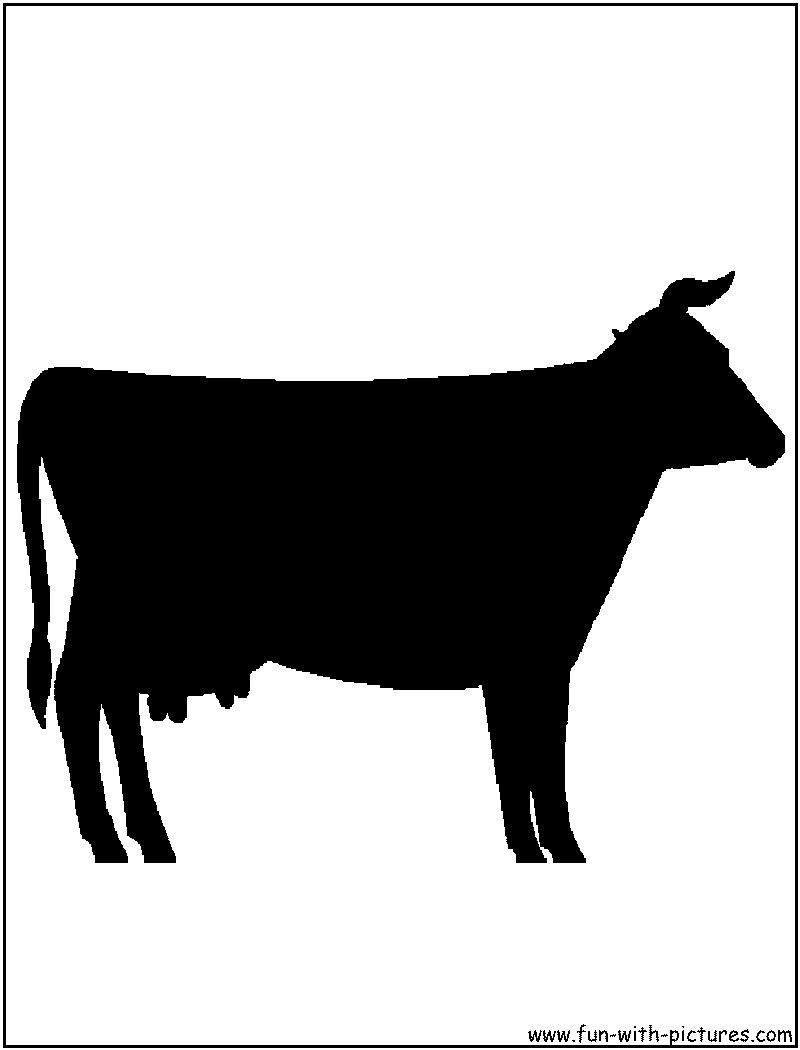 800x1050 Beef Cow Silhouette Clipart Panda