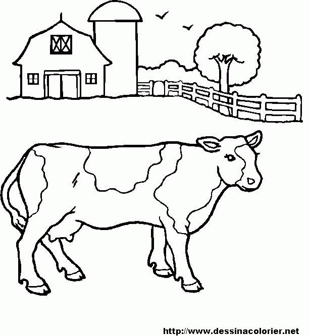 612x666 Beef