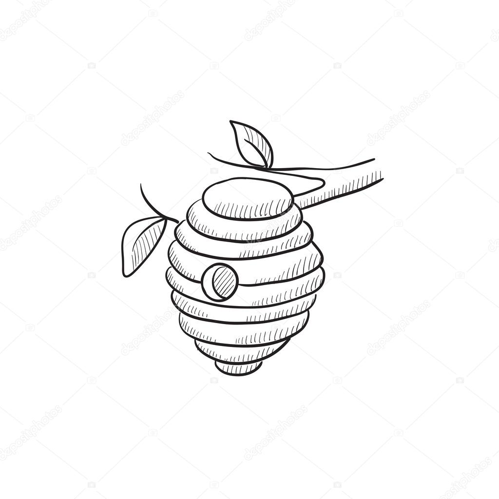 1024x1024 Bee Hive Sketch Icon. Stock Vector Rastudio