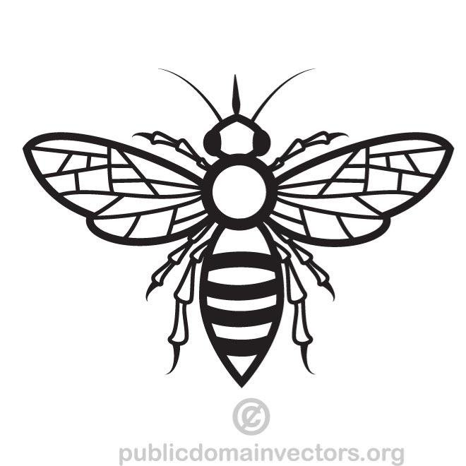 660x660 Bee Vector Drawing.eps, Vector Graphics