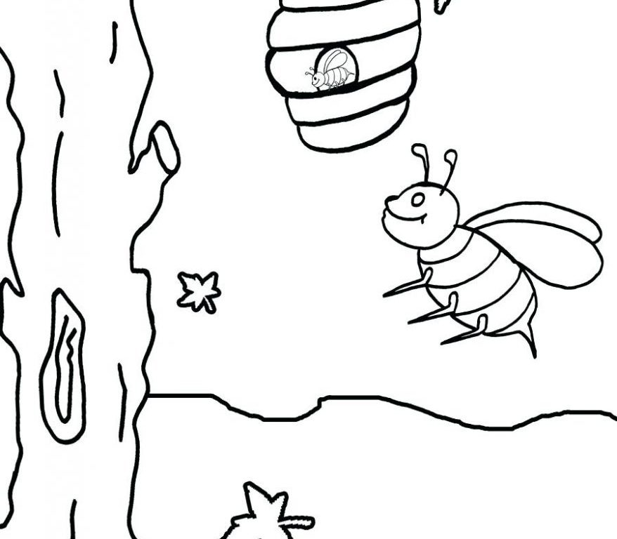 878x768 Bee Coloring Page For Toddler Easy Bumble And Pages Printable