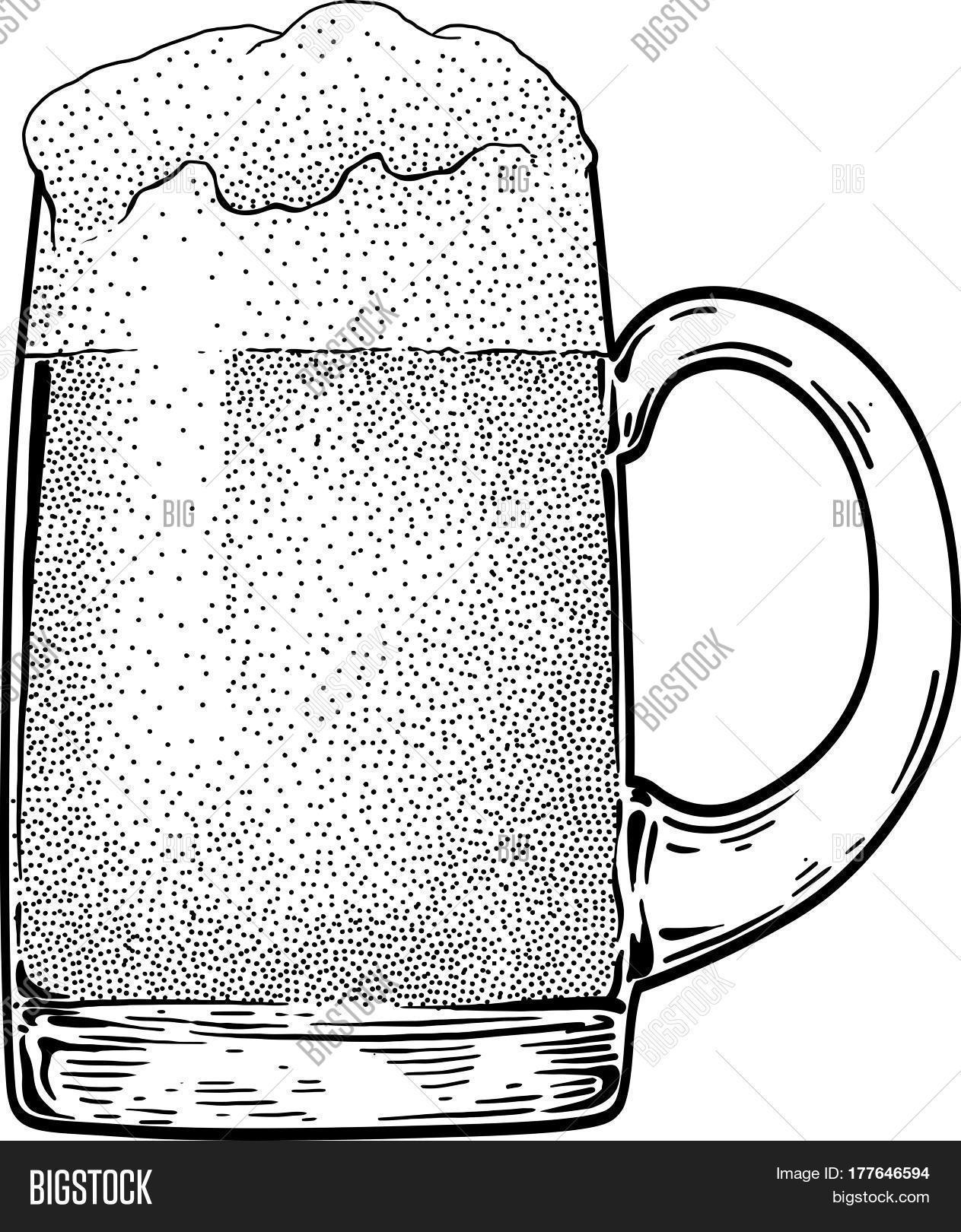 1263x1620 Beer Mug Illustration, Drawing, Vector Amp Photo Bigstock