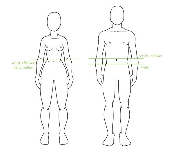 600x525 A Woman's Waist Line Is Level With The Belly Button But A Man'S